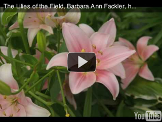 harp music video: lilies of the field